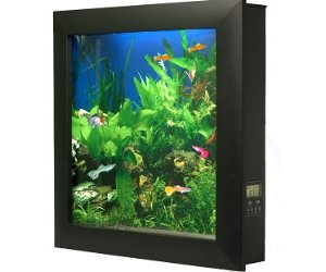 Wall-Mounted Aquarium
